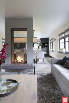 Now THIS is a see-through fireplace!