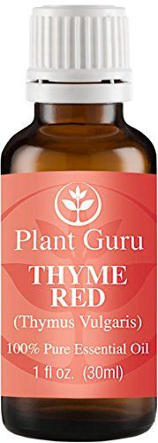 Botanical Name: Thym