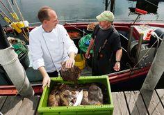 Wir verwenden in unserer Küche hauptsächlich Lebensmittel aus der Region und Frisches aus der Ostsee.
