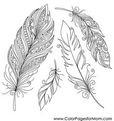 feather coloring page 32