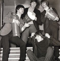 Silly beatles