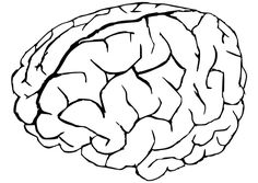coloring page brain - Brain Coloring Page