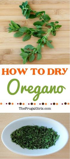 How to Dry Oregano Tip! ~ from TheFrugalGirls.com ~ Did you know that drying your own herbs is ridiculously simple? You'll love this simple little trick for DIY Organic Dried Herbs!