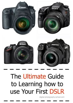 The Ultimate Guide to Learning how to use Your first DSLR Beginner Photography, How To Learn Photography, Photography Courses, Bath Photography, Whimsical Photography, Photography Studios, Hobby Photography, Dslr Photography Tips, Photography Lighting