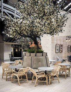 100 year-old building on Sydney's Woolloomooloo Wharf transformed by Ovolo Woolloomooloo, the design hotel that likes to give. Restaurant Design, Decoration Restaurant, Deco Restaurant, Outdoor Restaurant, Design Hotel, Hotel Decor, Restaurant Marketing, Restaurant Lighting, Restaurant Ideas