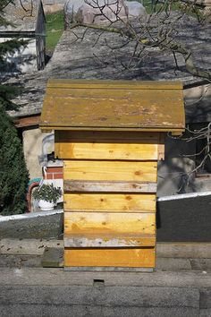Types of Beehives - Langstroth Versus Top-Bar and Warré Hives Which Type is Right for You?