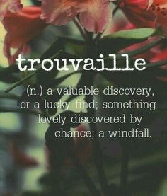 Word for the Day: Trouvaille (n), a valuable discovery or a lucky find; something lovely discovered by chance; a windfall Unusual Words, Weird Words, Rare Words, Unique Words, Cool Words, Fancy Words, Big Words, Pretty Words, Beautiful Words