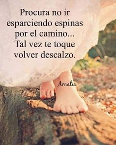"2,389 Me gusta, 13 comentarios - Luz Libertad (@luzlibertad) en Instagram: ""Cosechamos los que sembramos.  Así que no hay que sembrar espinas. En cualquier momento puede ser¡"" Spanish Inspirational Quotes, Spanish Quotes, Wisdom Quotes, Words Quotes, Life Quotes, Lessons Learned In Life, Life Lessons, Quotes En Espanol, Spiritual Messages"