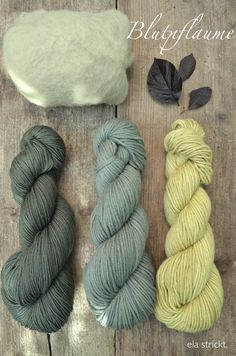 ela: Wolle mit Pflanzen färben