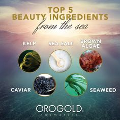 Top 5 Beauty Ingredients from the Sea