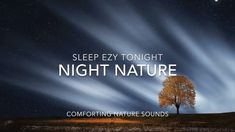 Relax with these beautiful nature sounds from the forest with 174 Hz Solfeggio tones for deep relaxation and healing. This tone is a nurturing and healing so. Forest Sounds, Nature Sounds, Deep Relaxation, The Creator, Healing, Positivity, Night, Optimism