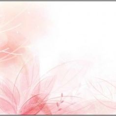 Light Pink Flowers Photography - Flowers : The Beauty Of Flowers ...