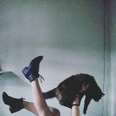 """49 curtidas, 5 comentários - fox (@nnamiarj) no Instagram: """"cat."""""""