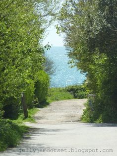 Path down to Ringstead Bay, Dorset.