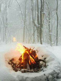 "This photo references London's story ""To Build a Fire"" in response to the need for warmth in the snowy atmosphere for survival."