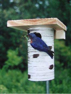 The best bluebird house around.... Gilbertson Bluebird Nest Box in PVC-NABS Approved