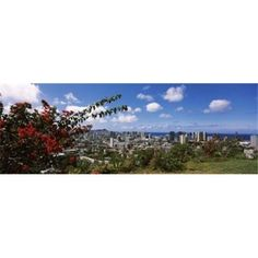Panoramic Images PPI111531L High angle view of a cityscape Honolulu Oahu Hawaii USA Poster Print by Panoramic Images - 36 x 12, As Shown
