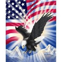 Plush Eagle Freedom Queen-Mink Style Blanket