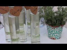 Kraut, Glass Vase, Youtube, Recipes, Food, Alcohol Free, Glass Bottles, Sticker, Eten