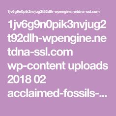 1jv6g9n0pik3nvjug2t92dlh-wpengine.netdna-ssl.com wp-content uploads 2018 02 acclaimed-fossils-might-not-depict-human-evolution.pdf