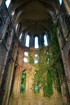 """The temple, once a beautiful place, was now overgrown with ivy. In a way the abandonment made it more breathtaking in the way the nature had taken it over."" ©Ember Shadow"