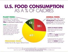 What category of food do you mainly consume?