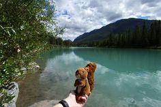 https://flic.kr/p/wMYE8p   Banff #mascot #mascotte #travelingmascot #travellingmascot #DexterLEcureuil #DexterTheSquirrel #peluche #stuffedanimal #Canada