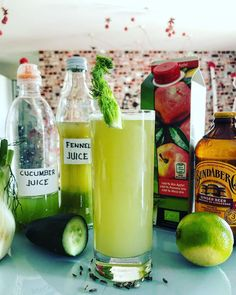 This is an interesting mix. Fennel is an herb with many medicinal properties including the ability to help with bloating and digestive disorders, improve eyesight, and treat hypertension. #Juice #VegetableJuice #JuiceRecipes Juicer Pulp Recipes, Healthy Juicer Recipes, Help With Bloating, Vegetable Juicer, Improve Eyesight, Cucumber Juice, Bean Sprouts, Wheat Grass, Ginger Beer