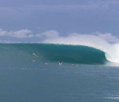 いいね!7,892件、コメント129件 ― SURF MOREさん(@magicseaweed)のInstagramアカウント: 「Imagine almost having a picture of the best wave you're ever going to get and pulling back. HT's…」