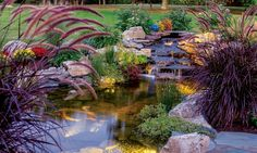 Bucks County Water Features   Pond, Waterfall, Waterfountain & Water Garden Design and Installation in Richboro PA