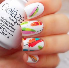 2 Patterns/Sheet Colorful Feather Nail Art/Water Decals - BP-W18 # 20609