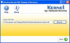 Main window of Kernel for SQL Password recovery software.