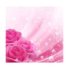 Pink roses and bubbles ❤ liked on Polyvore featuring backgrounds and sliki