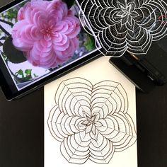 Day 17 #30ideas30days #illustration #flowers #blackandwhite #drawing #patternly.design #30ideias30dias #ilustração #flores #pretoebranco #desenhoobservacao #decolalab2016 #oficinaamandamol