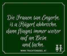 Haha, Motivation, Funny, Quotes, Gaudi, Bavaria, Buffet, Humor, Humorous Sayings