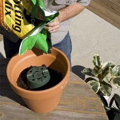 When repotting a plant, turn a plastic pot upside down in the new, larger container and add soil around it. When you're done, pull out the plastic pot and there will be plenty of room inside the bigger container to place your plant's root ball.