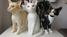 Paper sculptures. Three custom-made realistic cats (July, 2015).