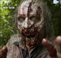 Zonbies On Walking Dead - zombies Photo