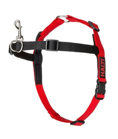 Halti Training Harness *** Want additional info? Click on the image. (This is an affiliate link and I receive a commission for the sales)
