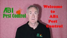 Pest Control Oatley and Termite Specialist - 0481 194 619