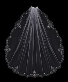 Beautiful wedding veil.  I'm torn between two!  Decisions, decisions.
