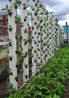 20 Cool Vertical Gardening Ideas, http://hative.com/cool-vertical-gardening-ideas/,