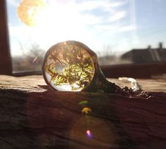 Véritable mousse collier, collier de terrarium, mousse séchée, collier Real moss, spécimen botanique, naturel, plante véritable bijoux, technique tiffany
