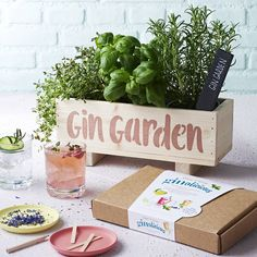 I've just found Gin Botanical Cocktail Garden Kit. WINDOWSILL PLANTER OPTIONAL EXTRA Immerse yourself in the botanical infused world of Gin cocktails. Contains everything you need to sow, grow & mix.. £16.95