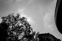 iMagoProject OTT. 25 2013 #IMAGOURBIS #ITALY #NOVARA #BLACKANDWHITE #BLACK #WHITE #ORIGINALPHOTOGRAPHERS #ORIGINALPHOTOGRAPHY #PHOTOGRAPHERS #PHOTOGRAPHER #PHOTOGRAPHY #SUN #SKY