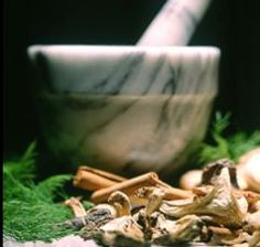 Mushroom Extract May Hold Key to Pancreatic Cancer Cure | Health & Healing
