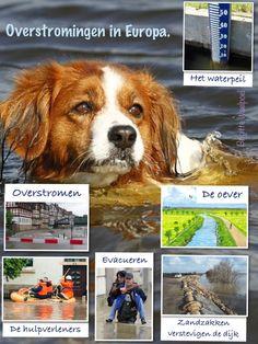 Overstroming! #collage bij @Nieuwsbegrip vd week @woordclusters #woordenschat