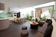 Contemporary house with indoor plants