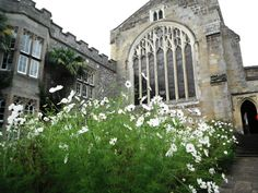 FitzAlan Chapel at Arundel Castle White Cosmo, Arundel Castle, William The Conqueror, Castles In England, The Beautiful Country, Medieval Castle, Arches, Gates, Cosmos