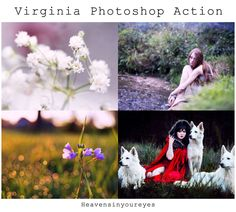 Virginia Photoshop Action FREE Download